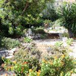 Villa_Auriga_26
